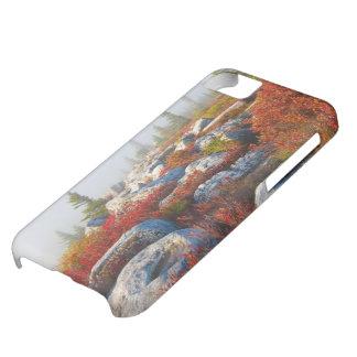 Dockan Sods vildmarknedgången som är scenisk med iPhone 5C Fodral