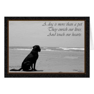 Död av ett husdjur, hunddöd, ledsen, hund tittar hälsningskort