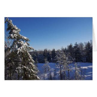 Dolda träd för julsnö i vinterskog hälsningskort