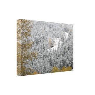 Dolda träd för snö i Whistler, B.C. Canvastryck