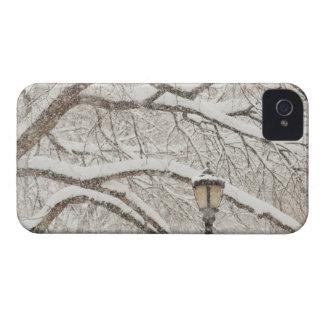 Doldt träd 2 för snö iPhone 4 Case-Mate skydd
