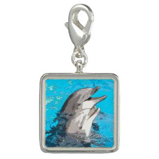 Dolphin20160501 Foto Berlock