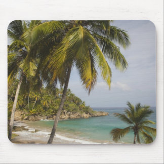 Dominikanska republiken norr kusten, Abreu, Playa Musmatta
