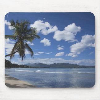 Dominikanska republiken Samana peninsula, Las 4 Musmatta