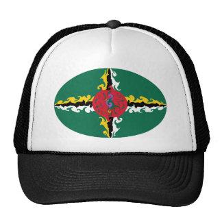 Dominikisk Gnarly flaggahatt Trucker Kepsar