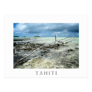 Dött trä i vykort för Tahiiti vittext Vykort