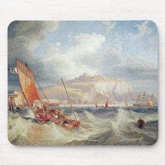 Dover 1857 musmatta