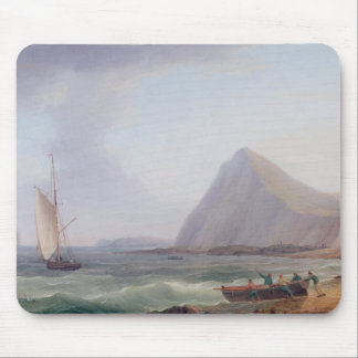 Dover klippor musmatta