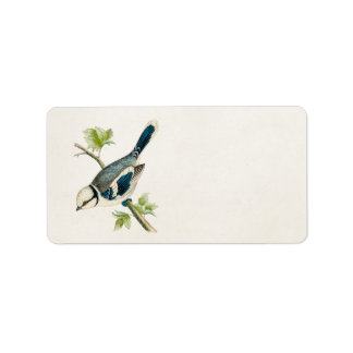 Dra för fåglar för Songbird för fågel för Adressetikett