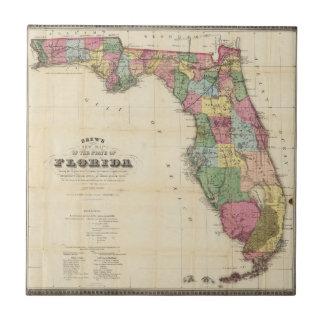 Drews ny karta av det statligt av Florida Kakelplatta