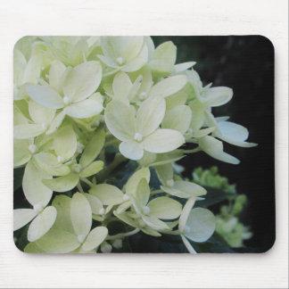 Drömlik vanlig hortensiablommigt musmatta