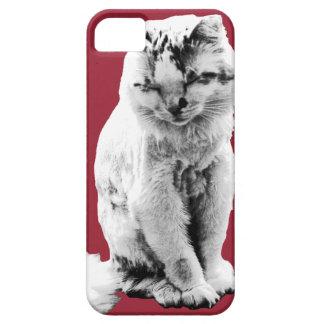 Drömma kattungefodral iPhone 5 skal