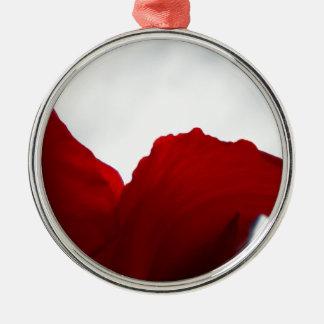 Drömmar av Australien Julgransprydnad Metall