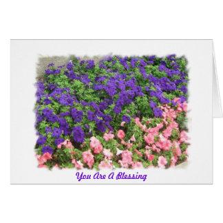 Du är en välsignelse hälsningskort