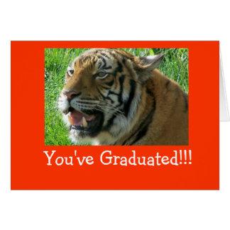 Du har avlagt examen!!! hälsningskort