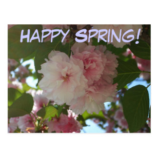 Dubbel blomstra körsbärsröd vykort för lycklig vår vykort