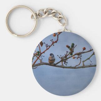 Dubbla-bommad för finch på gren rund nyckelring