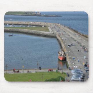 DunLaoghaire hamn/Irland Musmatta