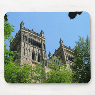 Durham domkyrka musmatta