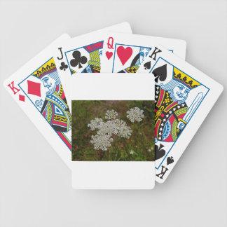 Dyka upp glädje spelkort