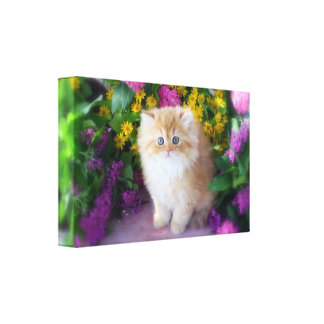 Dyrbara kattungekatter skräddarsy blommor canvastryck