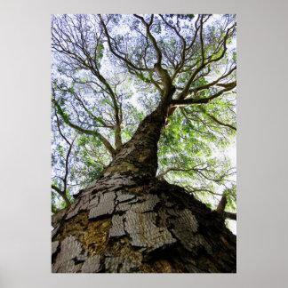 Earpod träd poster
