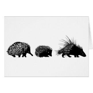 Echidna igelkott, porcupinehälsningkort hälsningskort