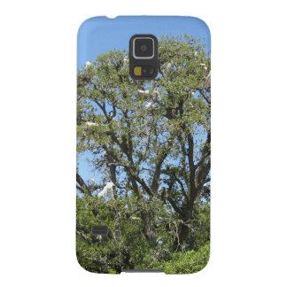 Egrets i ett träd galaxy s5 fodral