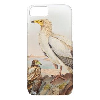 Egyptiska gamJohn Gould fåglar av Storbritannien