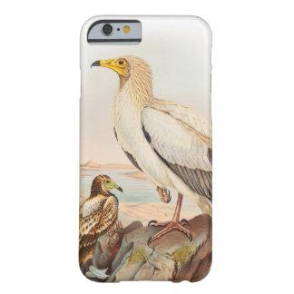 Egyptiska gamJohn Gould fåglar av Storbritannien Barely There iPhone 6 Fodral