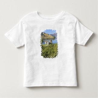 Eilean Donan slott, Skottland. Den berömda T Shirt