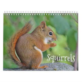 Ekorrar Kalender