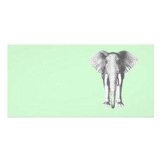 Elefant i svartvitt fotokort