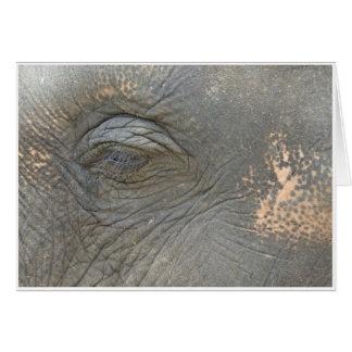 Elefant öga hälsningskort