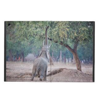 Elefant som ner för Acaciaträd iPad Air Skal