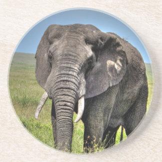 Elefant vid taggen Craven_HDR Print.jpg Underlägg Sandsten