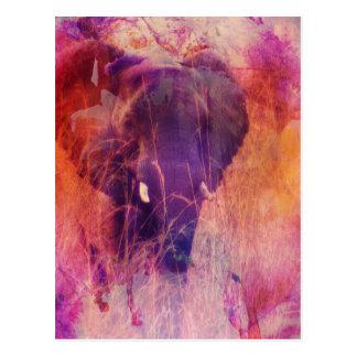 Elefant Vykort