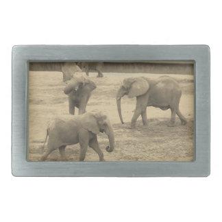 Elefantbältet spänner fast - vid Fernsavannahen