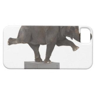 Elefanten som utför trick boxas på iPhone 5 fodral