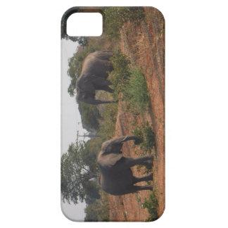 Elefanter i vilden iPhone 5 skal