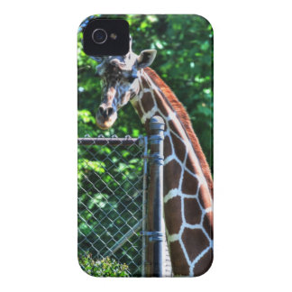 Elegansgiraff iPhone 4 Skydd