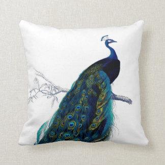 Elegant färgrik påfågel för vintageblått prydnadskuddar