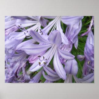 Elegant purpurfärgad blommigt affisch