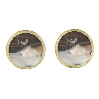 Elegant Siamese katt Guldpläterade Manschetterknappar