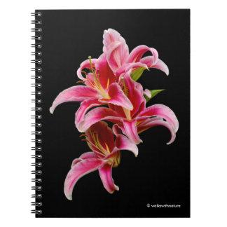 Eleganta rosa orientaliska liljar anteckningsbok