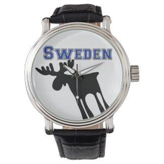 Älg / Moose, Sweden