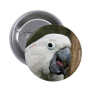 Emblem klämmer fast den Moluccan kakaduan som ut Standard Knapp Rund 5.7 Cm