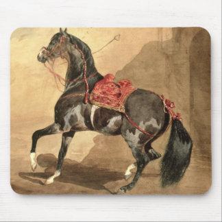 En arabisk häst (som läggas w/c, besegra på papper musmatta