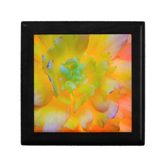 En bakbelyst glödande begoniablommar smyckeskrin