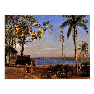 En beskåda i Bahamas, Albert Bierstadt målning Vykort